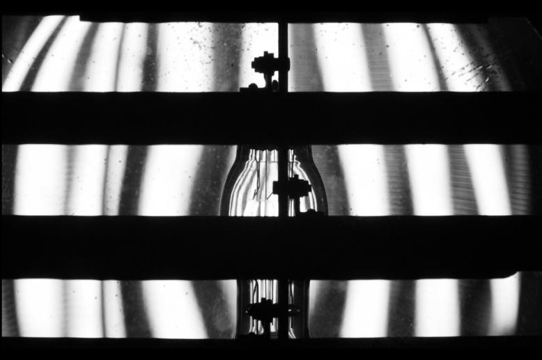 Cliona Harmey Banner