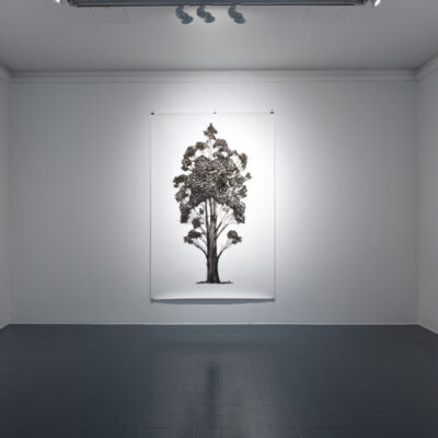 Eamon O'Kane, (L-R) 'Baum Test II', 'Baum Test I', 'Baum Test III', Charcoal and acrylic ink on paper, 220 x 150cm each, 2017, Credit: Photography Roland Paschhoff