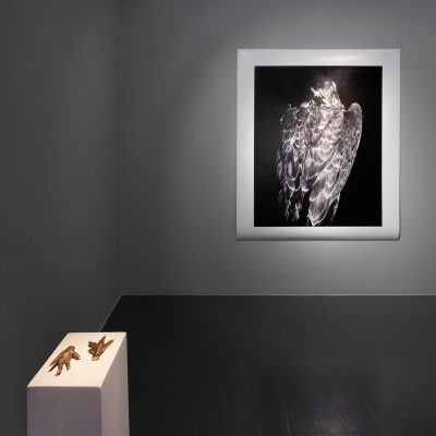 Martin Healy: Installation View, Credit: Photography Roland Paschhoff
