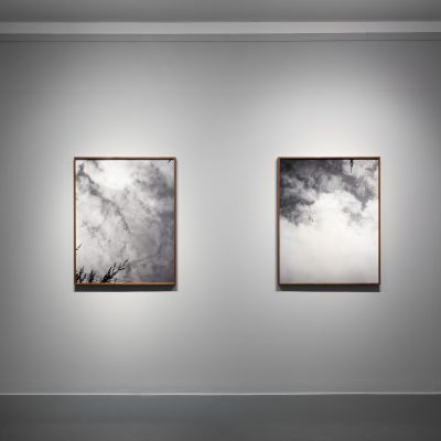 Martin Healy: 'Those who were birds', Archival Pigment Prints, Credit: Photography Roland Paschhoff