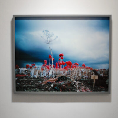 Richard Mosse, Richard Mosse, 'Tombstone Blues', Digital C-Print, Edition No. 3/5 + 1 AP, 89.5 x 72cm, 2012, On loan from Private Collection