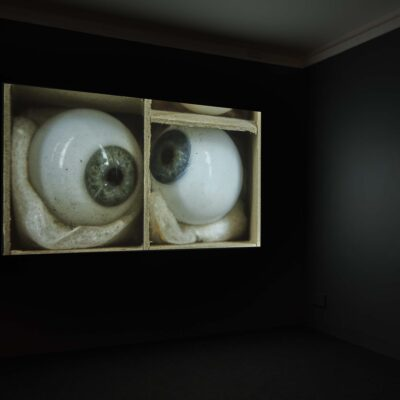 Susan MacWilliam, Modern Experiments, Aldous's Eyes, 2014. Photography Ros Kavanagh