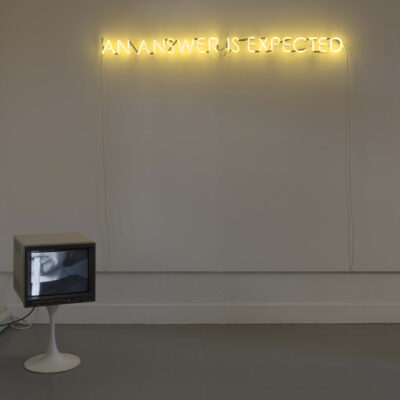 Susan MacWilliam, Modern Experiments, The Last Person, 1998 | AN ANSWER IS EXPECTED, 2013. Photography Ros Kavanagh